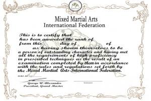 Mixed Martial arts certificate thumb